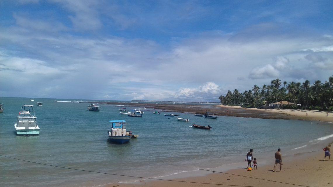 Praia do Forte: Bate e volta saindo de Salvador